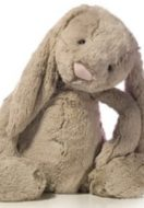 The Lesson I have Learned from a Stuffed Rabbit